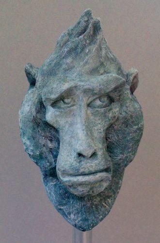 Tête de Macaque !